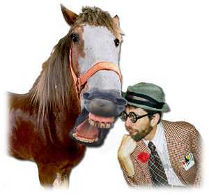 Customer service keynote by buford p fuddwhacker if someone gave you a horse as a gift negle Images